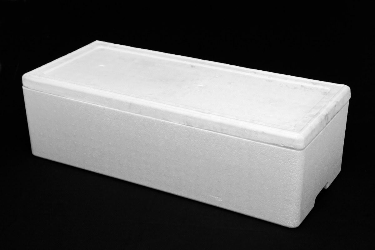 Caja de Filete de 100 Libras